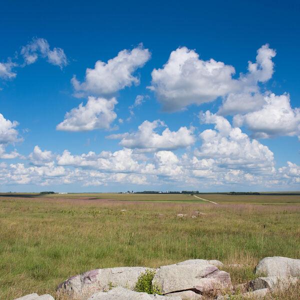 Minnesota landscape 5